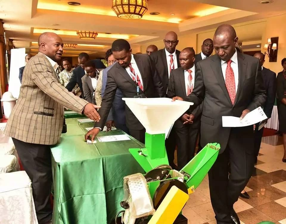 Ruto orders Agriculture ministry to act swiftly after maize farmers termed him useless