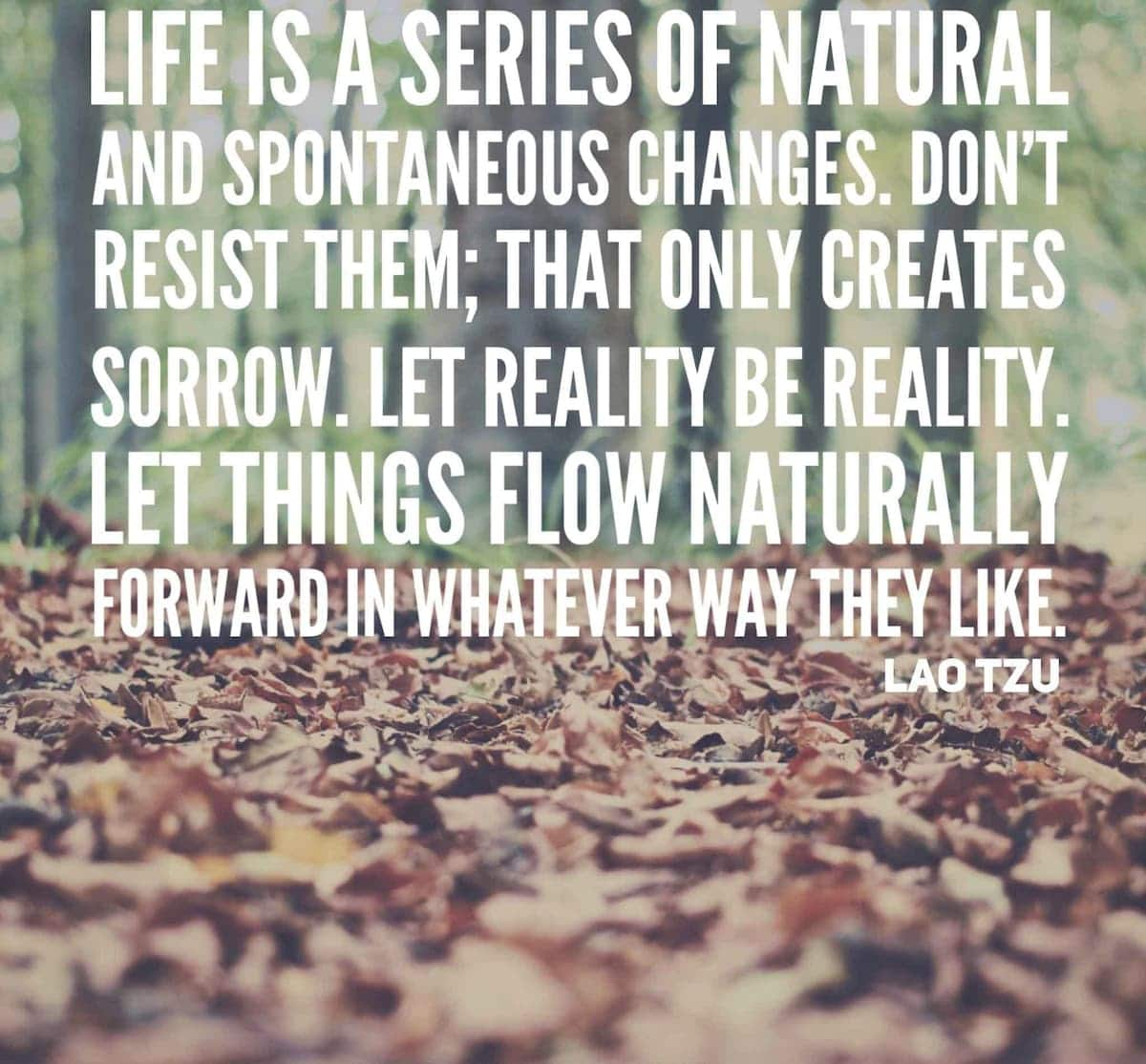 Quotes about change and moving on List of quotes about change Inspirational quotes about change List of quotes about change