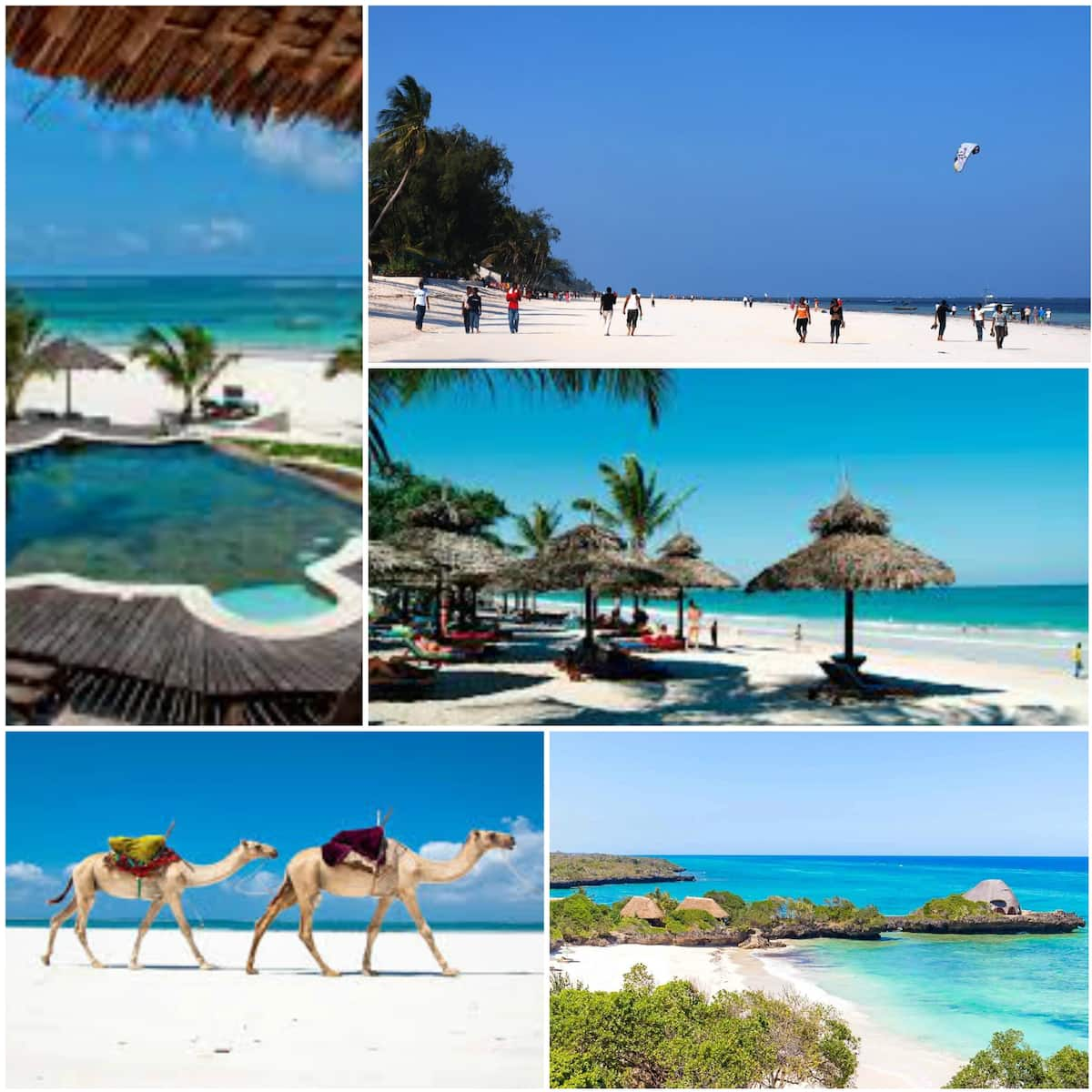 Tourist attractions in Mombasa