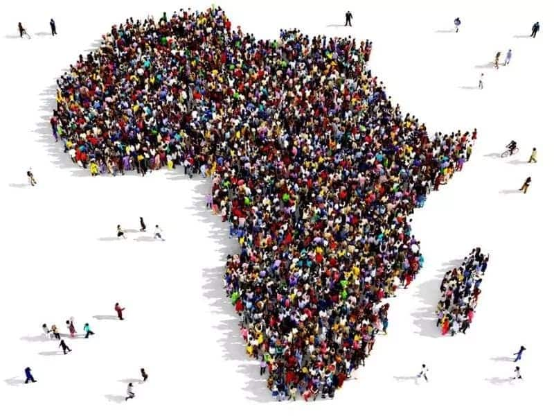 The largest country in Africa Which is the largest country in Africa First five largest country in Africa