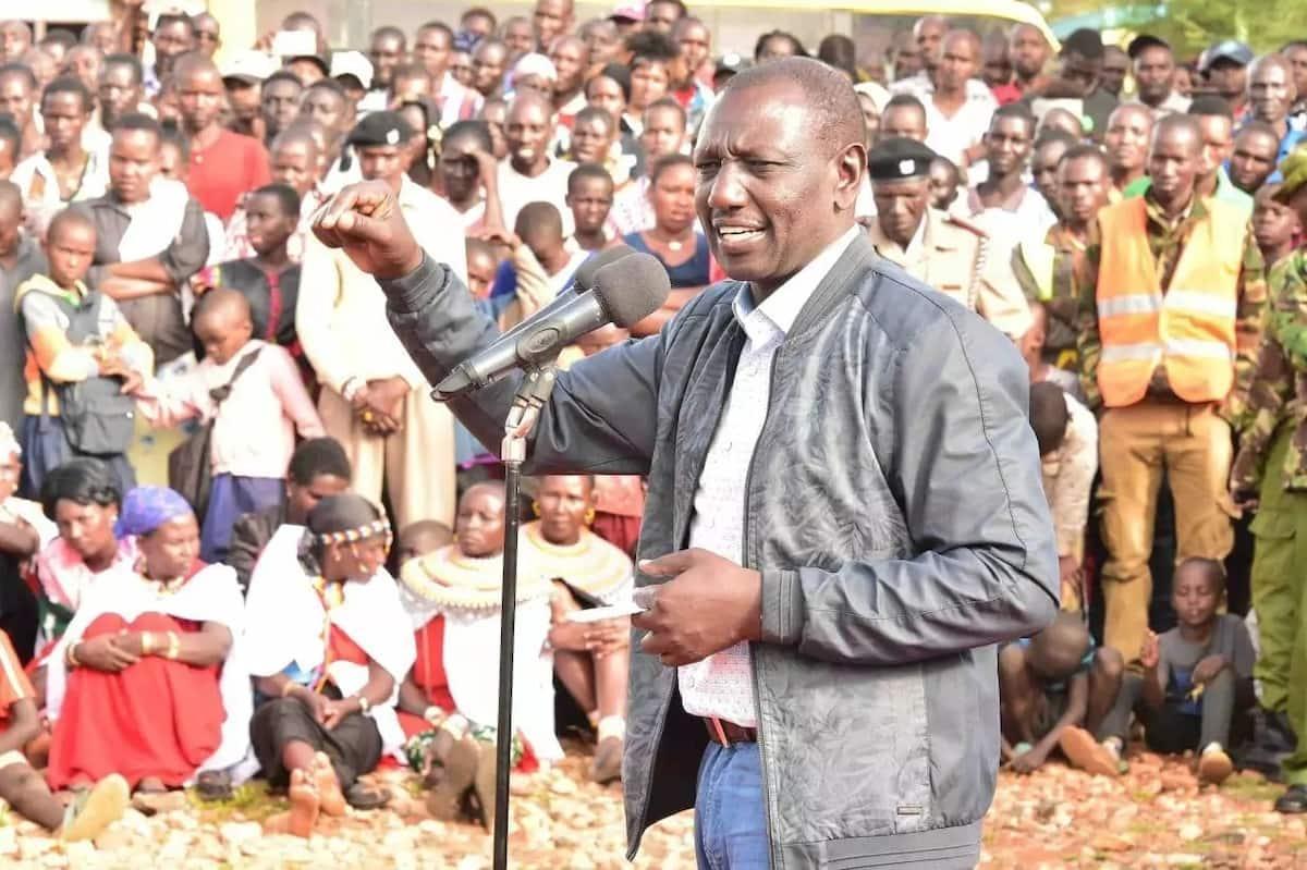 William Ruto threatens to whip fighting Kiambu leaders if they fail to unite