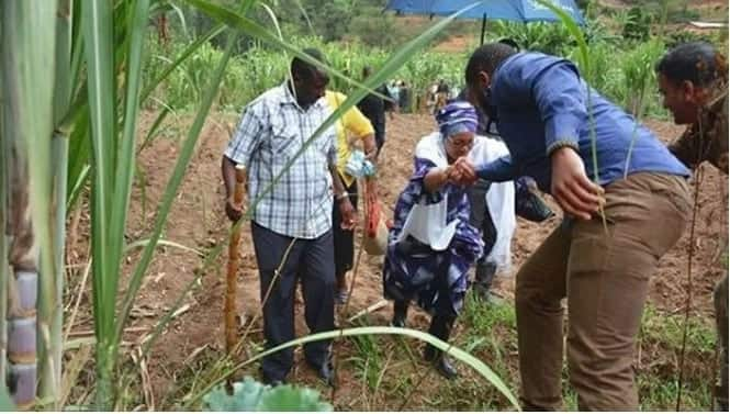Mchumbake Jacque Maribe alifanya kazi kama mlinzi wa mbunge - picha
