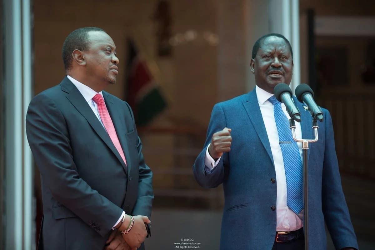 Ni lazima Raila aombe msamaha kwa Wakenya kama vile Uhuru alifanya - Mbunge wa Jubilee