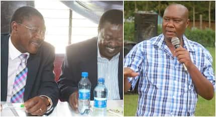 Gavana wa Busia amsuta Wetangula kwa kulemaza maelewanano ya Uhuru- Raila
