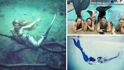 Secret mermaid society: See men and women who are part-human part-fish (photos, video)