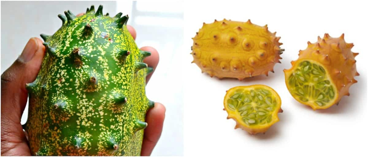 Health benefits of thorn melon Thorn melon fruit Thorn melon medicinal value