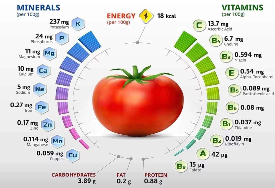 benefits of eating tomatoes, nutrients in tomatoes, benefits of tomatoes for skin