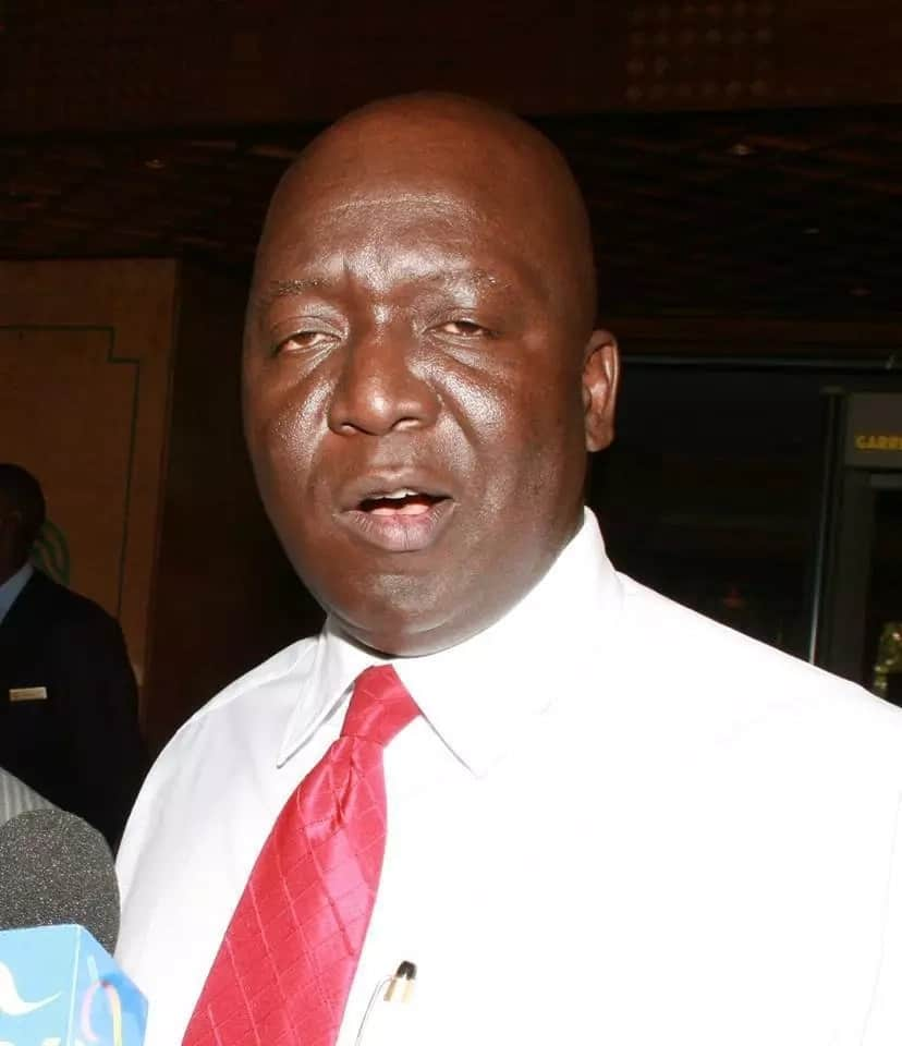Hustlers don't steal public resources, they work hard - Midiwo tells Ruto