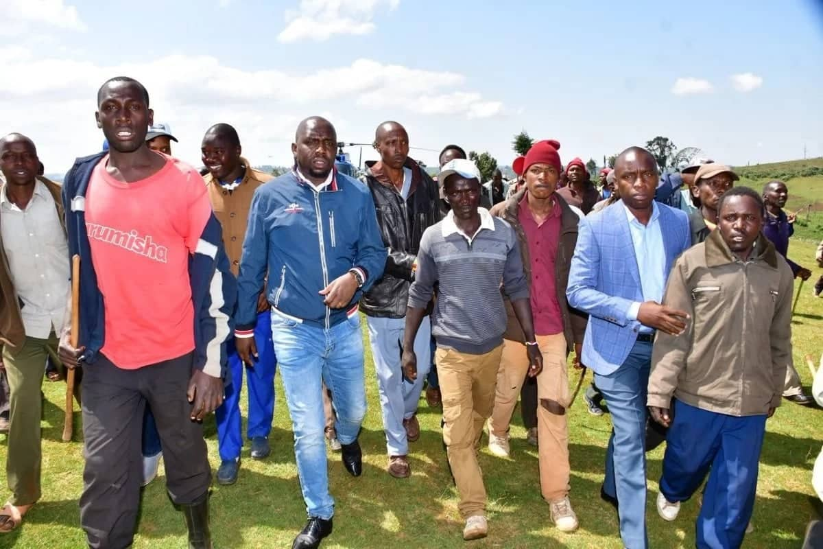 Mwandani wa Gideon Moi amtetea Raila kuhusu kufurushwa kwa raia Mau