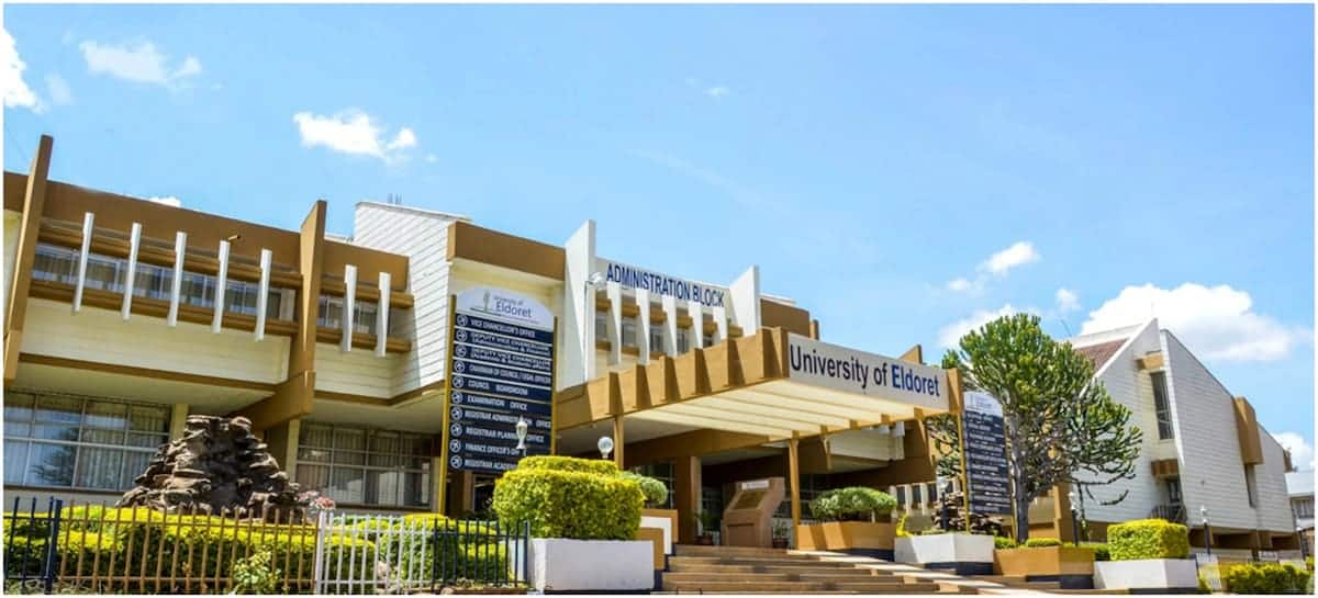 University of Eldoret courses, cluster points & fees