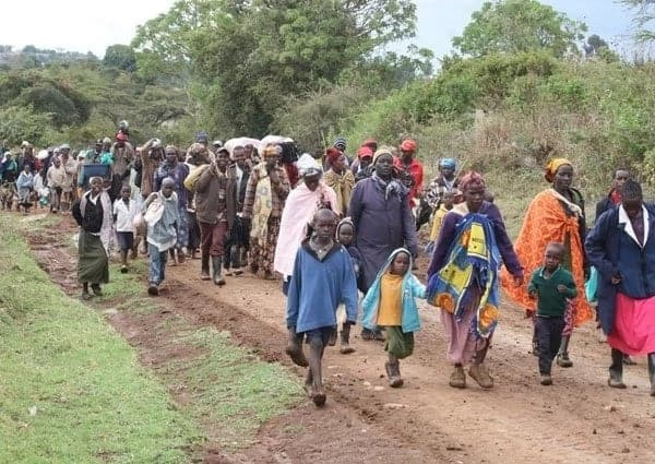 Mau eviction Kenya Mau eviction areas Mau eviction videos Mau eviction process