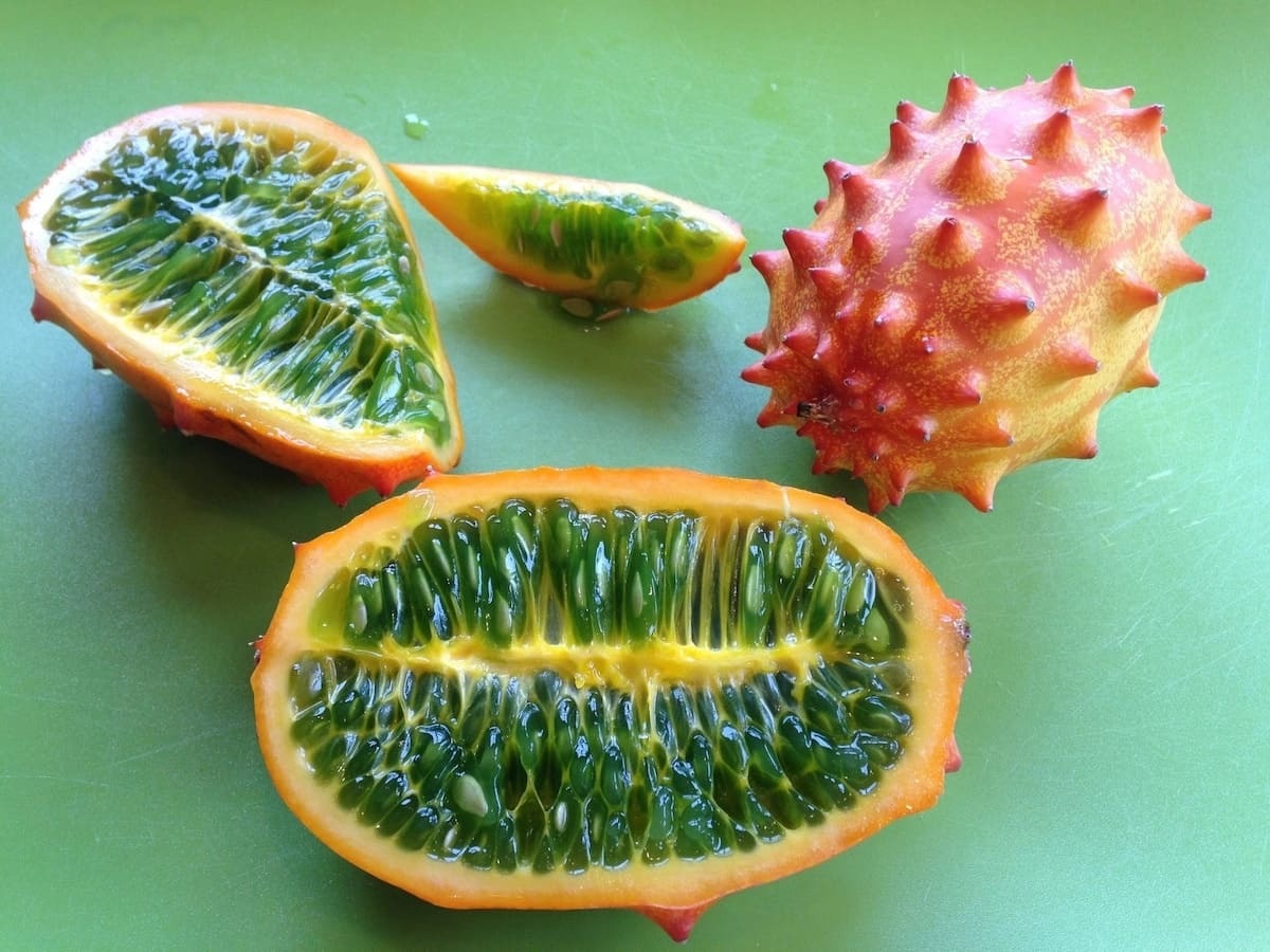 horned melon benefits of horned melon african horned melon