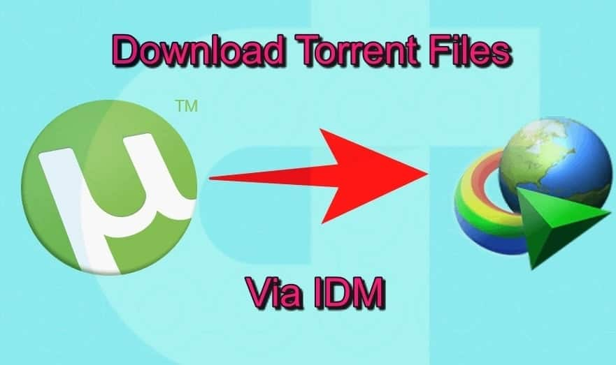 How to download torrents with idm download torrents directly with IDM internet download manager