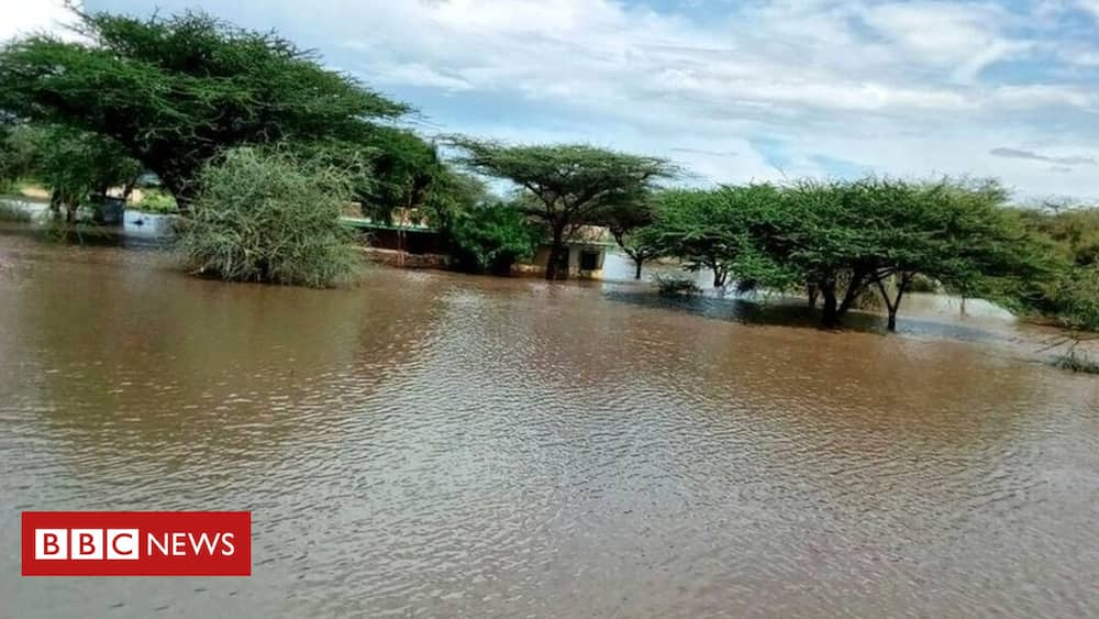 causes of climate change in Kenya