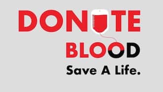 Hospitals appeals to public for urgent blood donation to help 14 Riverside Drive attack victims