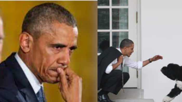 Aliyekuwa Rais wa Marekani Barrack Obama Aomboleza Mbwa Wake