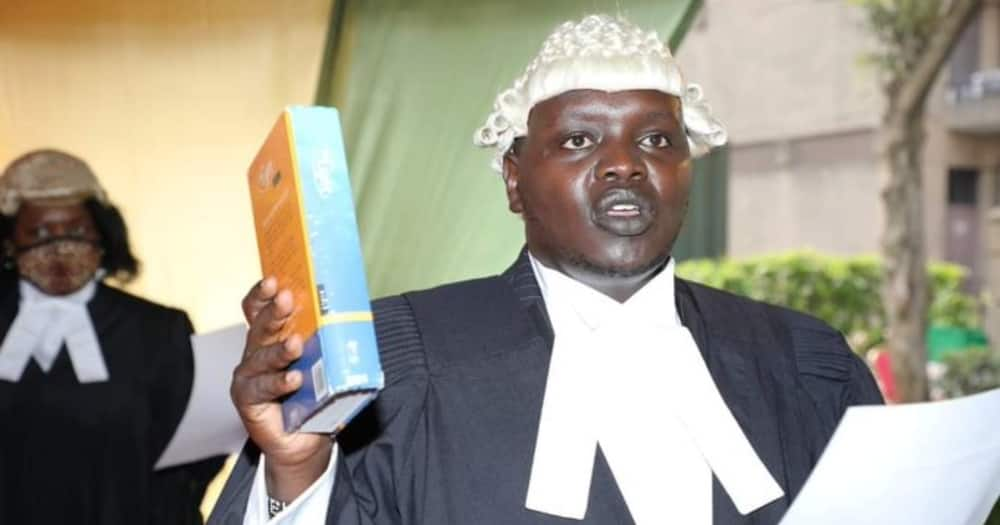 Senator Cherargei becomes Advocate of the High Court as Martha Karua ascends to Senior Counsel status