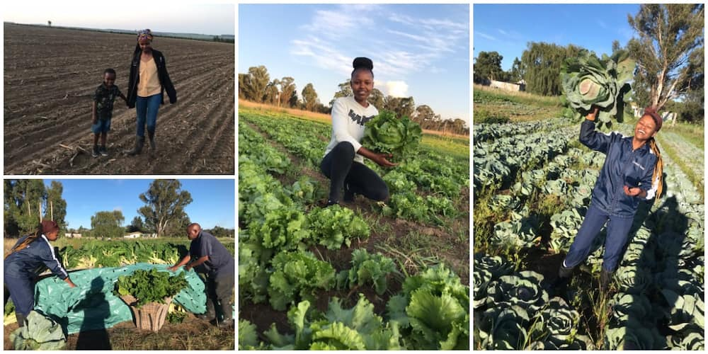 Meet 26-Year-Old Lady Who Runs Two Farms and Has 16 Employees, Her Story Will Inspire You