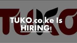 TUKO.co.ke is hiring English-Swahili freelance translators