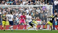Harry Kane on target as Tottenham clip Southampton in tough Premier League clash