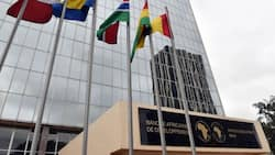 African Development Bank Debars 11 Kenyan Firms for Engaging in Corrupt, Fraudulent Practices