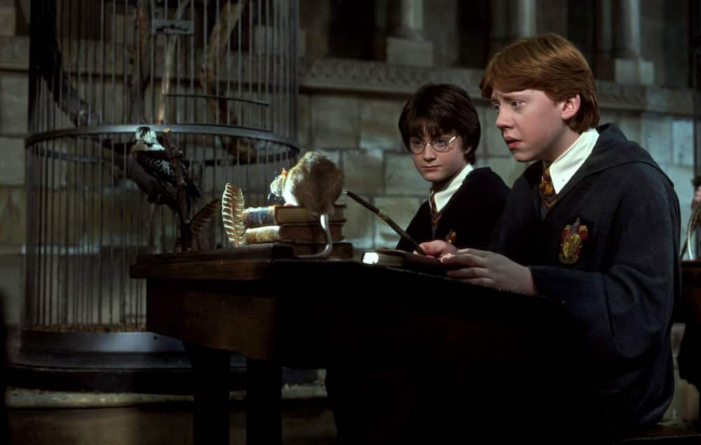 Transfiguration in Harry Potter