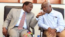 """Kivutha Kibwana Pours Cold Water on Kalonzo Musyoka's DCI Visit, Clearance: """"Who Complained against Him"""""""