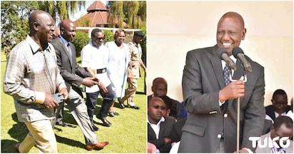 Ruto's Western Kenya allies accuse ODM MPs of using handshake to fight the DP