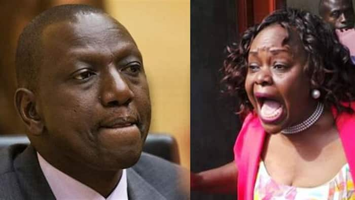 """Millie Odhiambo recalls learning with Ruto at UoN: """"He was cruising in vehicles"""""""