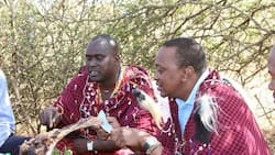 Uhuru moves Kenya Meat Commission to Defence Ministry in new executive order