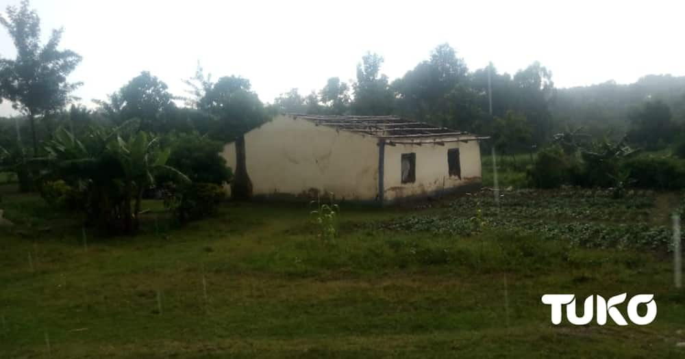 Bungoma family left in the cold after pastor demolishes house cries for justice