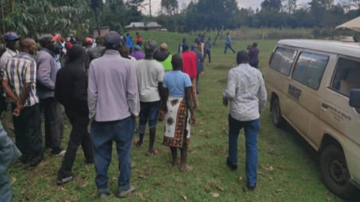 Bomet: Burial Postponed after Swarm of Bees Attacks Mourners