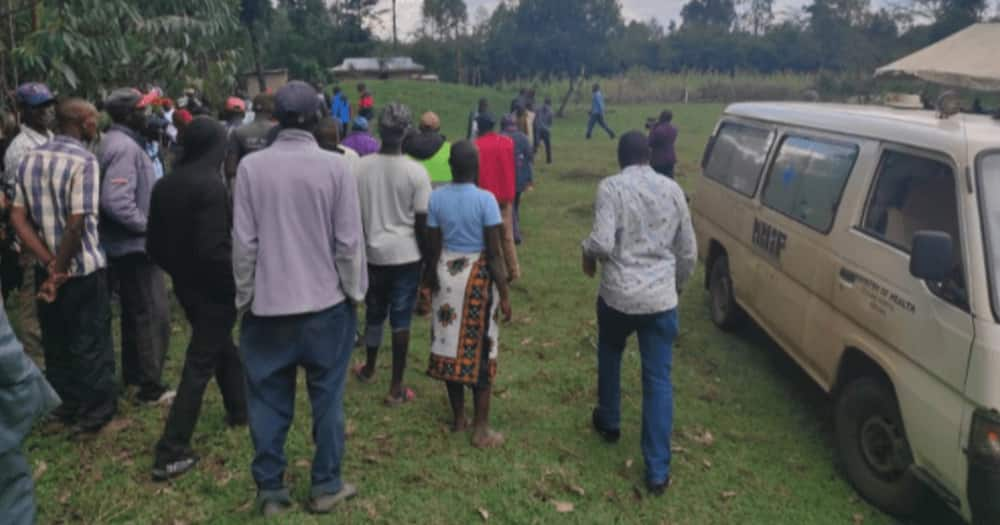 A swarm of bees disrupted the burial ceremony in Bomet.