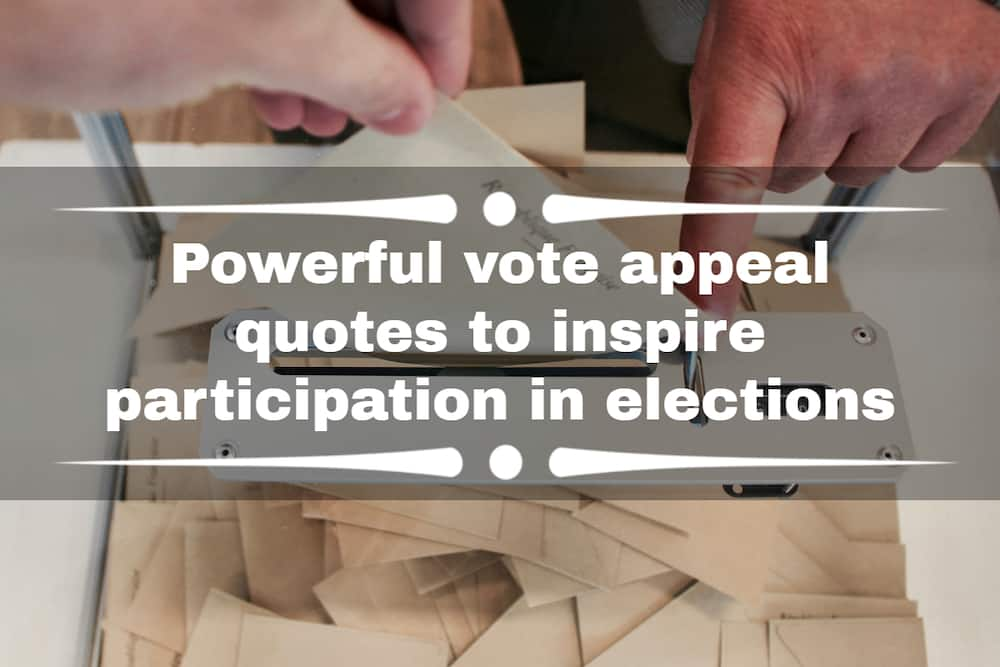 vote appeal quotes