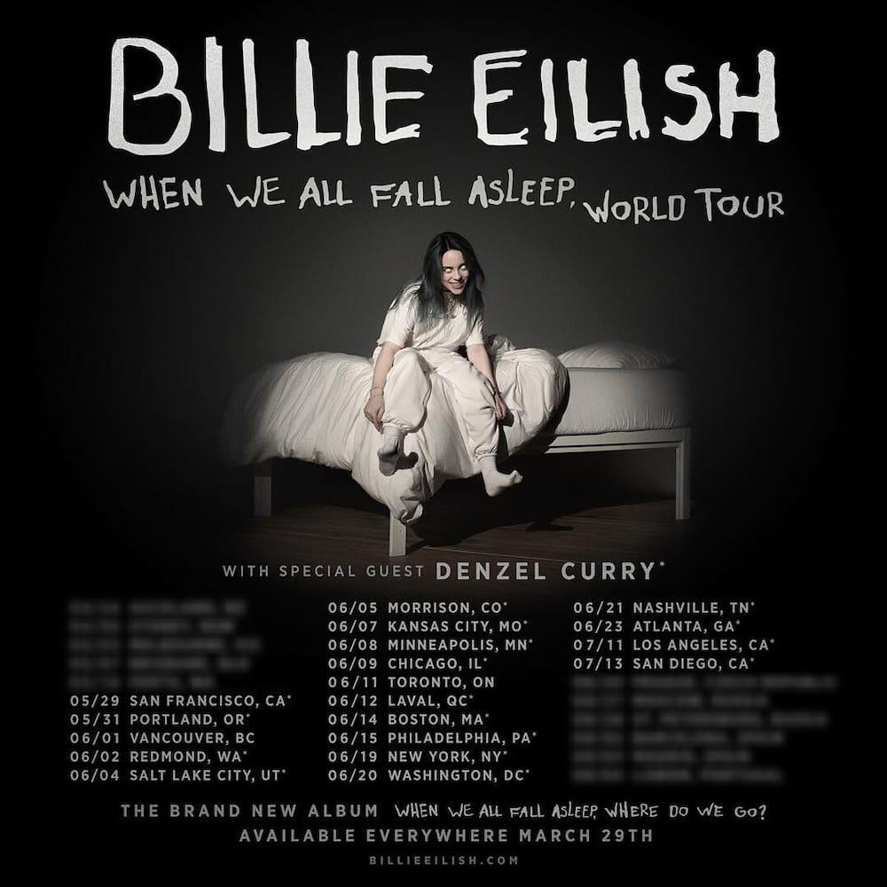 Why is Billie Eilish famous?
