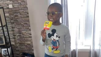 4-Year-Old Boy Mistakenly Buys KSh 280k Worth of Ice Cream with Mother's Credit Card