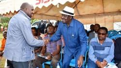 Kipchumba Murkomen Left with Egg on Face for Misrepresenting Raila's Speech to Mt Kenya Businessmen