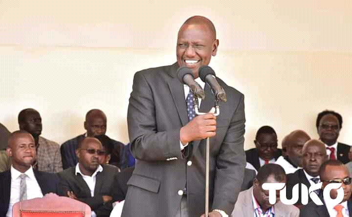 William Ruto insists maize farmers should stop whining about prices year in year out