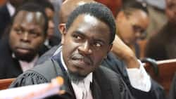 Rais wa Chama cha Mawakili Nchini, Nelson Havi Aachiliwa kwa Dhamana ya KSh 10,000