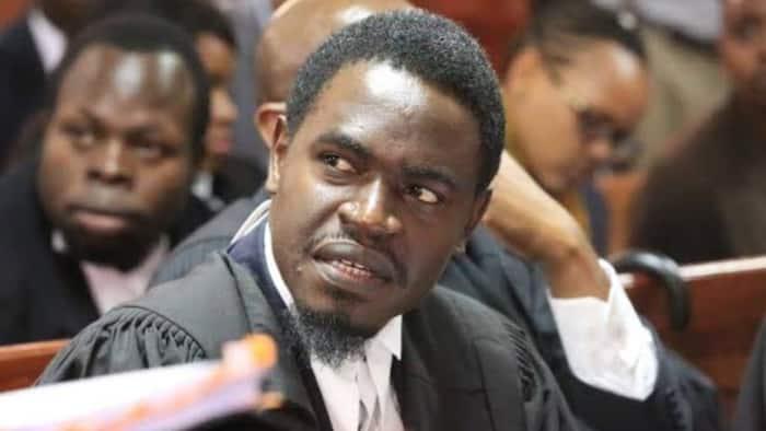 Senator Cherargei Condemns Nelson Havi's Arrest, Terms it Political Persecution