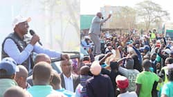 Kenyans Raise Concerns after William Ruto Pulls Relatively Small Crowd in Murang'a