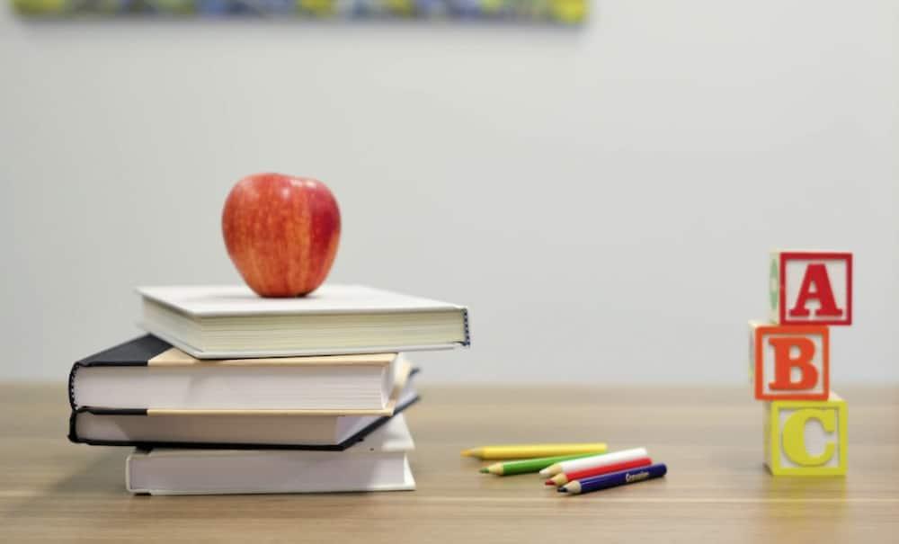 Homeschooling in Kenya: How does it work?