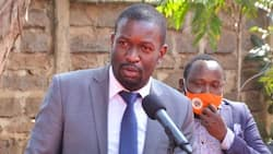"""Edwin Sifuna Rubbishes Claims ODM Is Obsessed with Winning at All Cost: """"We Believe in Peace"""""""