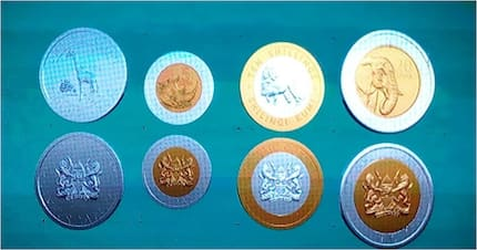 New-looking coins to hit your wallet as Uhuru launches new generation currency