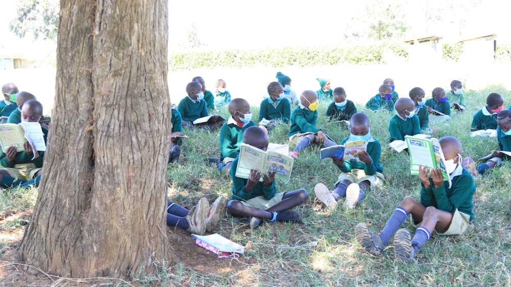 Students have lessons under a tree as schools reopen. Photo: Daily Nation.