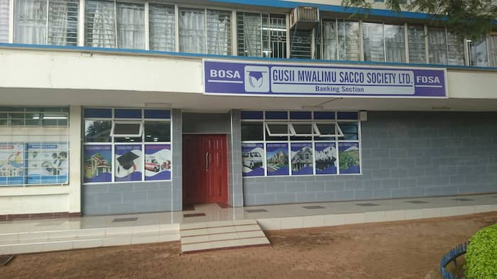 15 best Saccos in Kenya for savings and investment in 2021