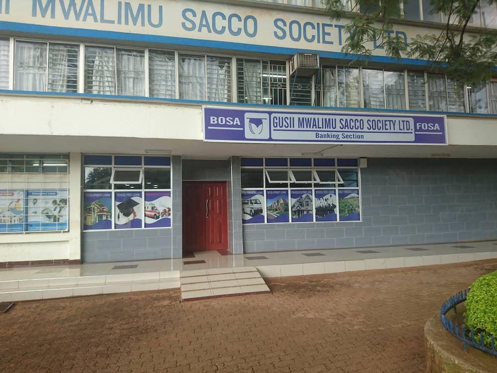 Best Saccos in Kenya