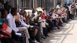 Bill to Stop Employers from Demanding HELB, KRA Clearance from Job Seekers Moves to Second Stage