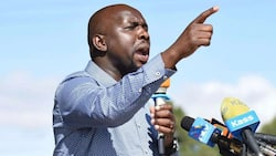 Murkomen Drafts Bill Against IEBC's Demand for Degree from Political Aspirants