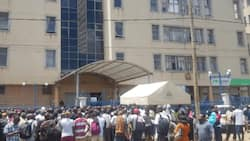 TSC Extends Contracts of Intern Teachers, Announces 1995 New Vacancies